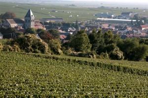 Le Mesnil sur Oger