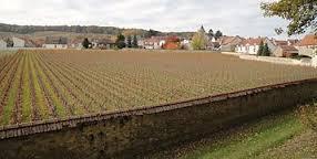 Krug clos du Mesnil